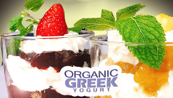 806. Jam Greek Yogurt Parfait