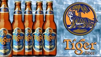 522. Tiger